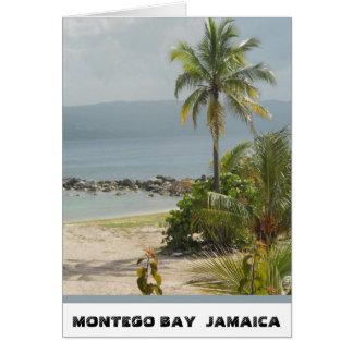 Cartes Palmier, Montego Bay la Jamaïque en juin 2011