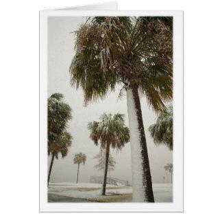 Cartes Palmiers dans une tempête de neige