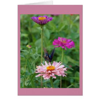 Cartes Papillon dans le jardin