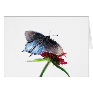 Cartes Papillon de machaon de Pipevine