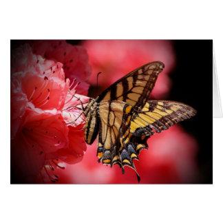 Cartes Papillon et fleurs - nuances de beige/de rose