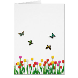 Cartes Papillon et tulipes