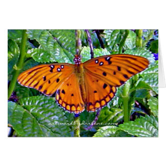 Cartes Papillon orange