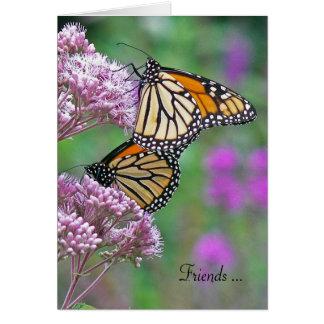 Cartes papillons d'Amitié-monarque