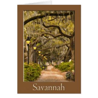 Cartes Parc de Forsyth - la savane, GA