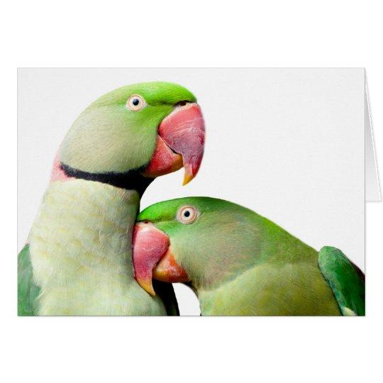 Cartes parrot