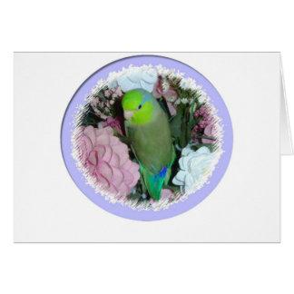Cartes Parrotlet masculin vert avec des fleurs
