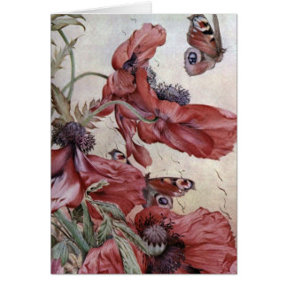 Cartes Pavots et papillons d'Edouard Jules Detmold