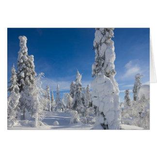 Cartes Paysage d'hiver dans Lappland