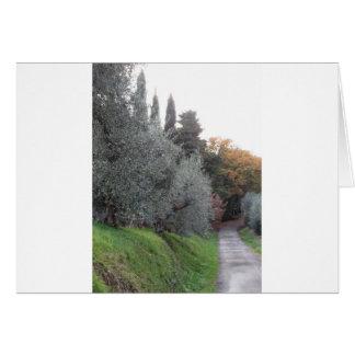 Cartes Paysage rural avec la route goudronnée pendant