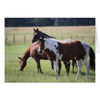 Cartes Peignez le cheval et les amis
