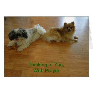 Cartes Pensant à vous avec la prière, chiens