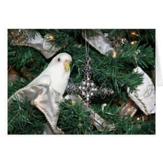 Cartes Perruche dans un arbre de Noël