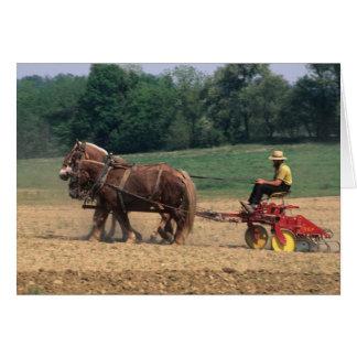 Cartes Personnes simples de pays amish dans l'agriculture