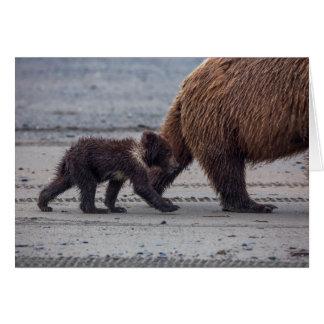 Cartes Petit animal d'ours de Brown