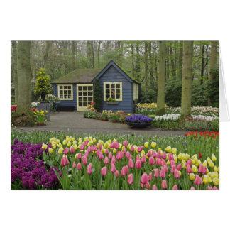 Cartes Petit fleuriste de cottage, jardins de Keukenhof,