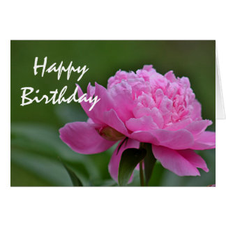 Cartes Photo de fleur de pivoine