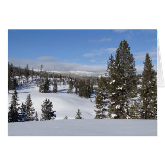 Cartes Photo de paysage d'hiver de Yellowstone