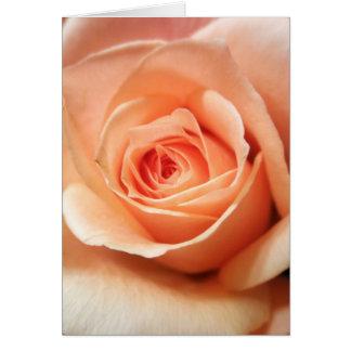 Cartes Photo florale d'abricot de pêche de fleurs roses