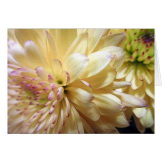 Cartes Photo jaune de fleurs de mamans de fleur de