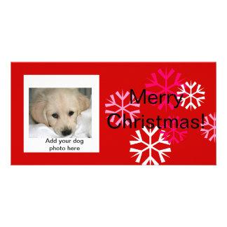 Cartes photos faits sur commande de Noël de chien  Photocarte
