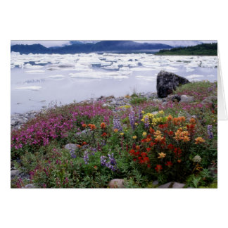 Cartes Pinceau, de loup, Fireweed. Icebergs Russell