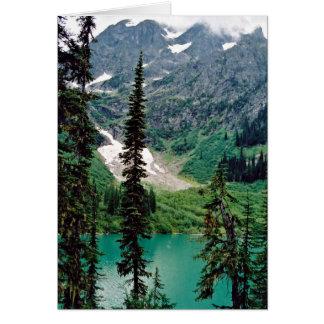 Cartes Pingston de saumure, britannique Columbia