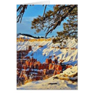 Cartes Pins Utah de neige d'hiver de canyon