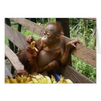 Cartes Pique-nique animal de banane de bébé
