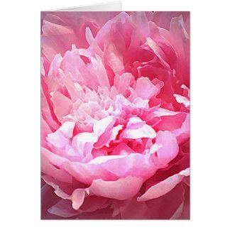 Cartes Pivoine rose hachée