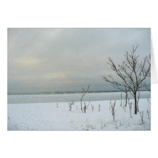 Cartes plage d'hiver