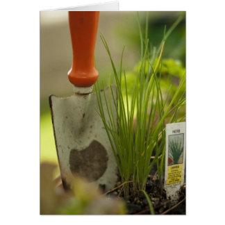 Cartes Plaisir de jardinage