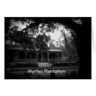 Cartes Plantation de myrtes en noir et blanc