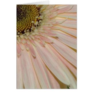 Cartes Plante pour la fleur de traitement