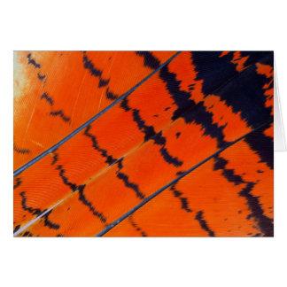 Cartes Plumes oranges et noires de cacatoès