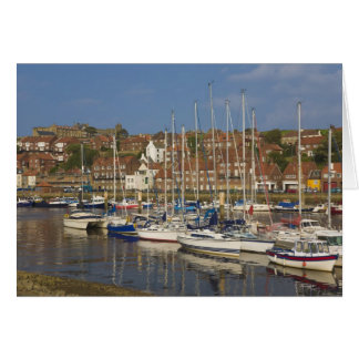 Cartes Port, Whitby, North Yorkshire, Angleterre