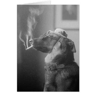 Cartes Portrait d'un chien, 1923
