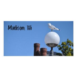 Cartes postales de Madison WI Modèle Pour Photocarte