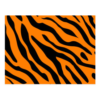 Cartes postales de rayure de tigre