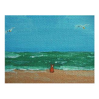 Cartes postales de roussette