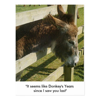 Cartes postales de salutations d'âne