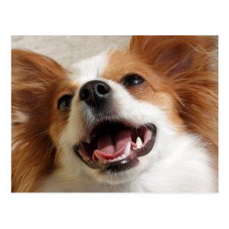 Cartes postales riantes de chien de Papillon
