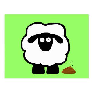 Cartes postales vides de moutons