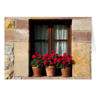 Cartes Pots de fleur de fenêtre dans le village