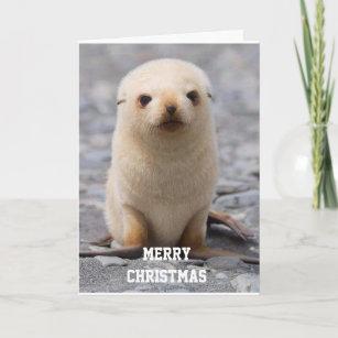 Joyeux courrier Noël Nom d/'entreprise Stickers merci phoques vos étiquettes