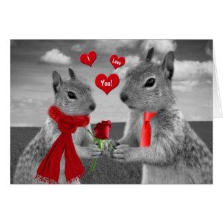 Cartes Pour le mari sur l'écureuil drôle de