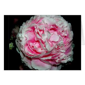 Cartes pour notes énormes de fleur