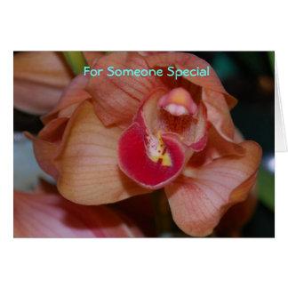 Cartes Pour quelqu'un spécial