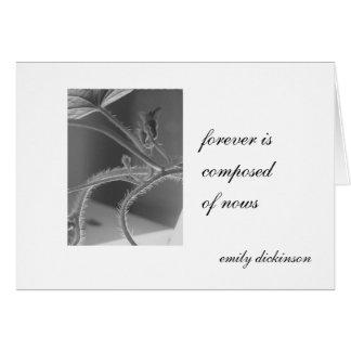 """Cartes """"Pour toujours se compose de nows."""" Emily"""