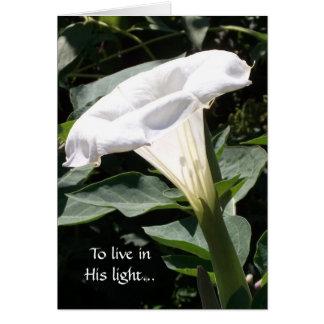 Cartes Pour vivre dans sa lumière